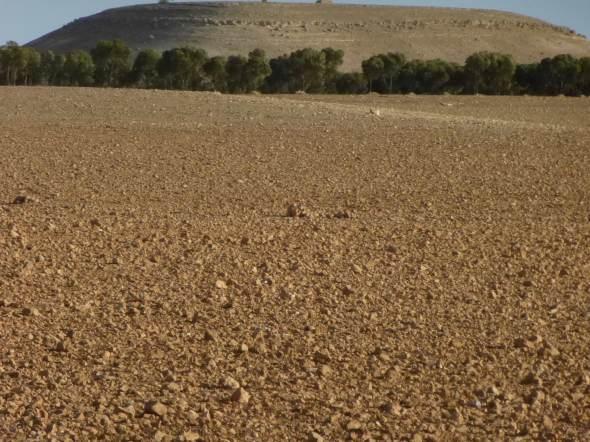 photo perso - Maroc  2013