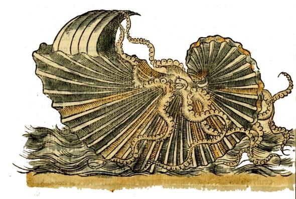 gravure maritime  ancienne -  extraite de manuscrit