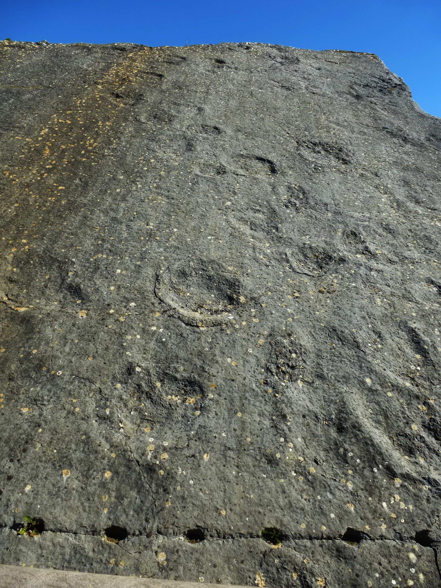 photo perso  : empreintes de dinosaures-  Azoia  - Portugal