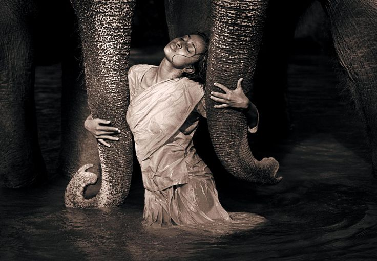 photo: Gregory Colbert