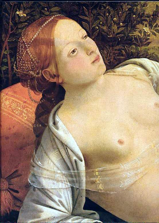 peinture: Piero di Cosimo - détail de Vénus, Mars & amour