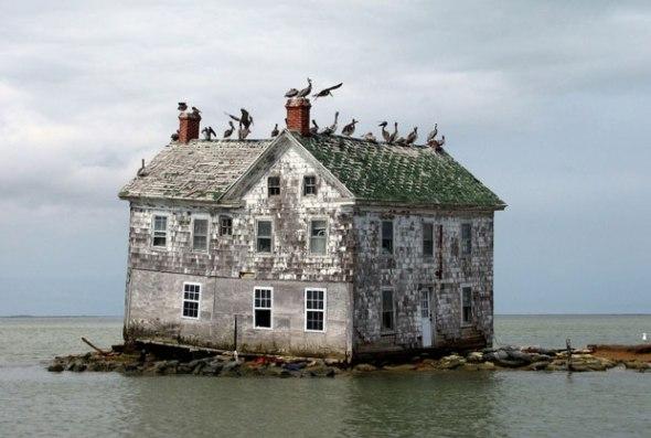 Hollande Island dans la baie de Chesapeake.jpg