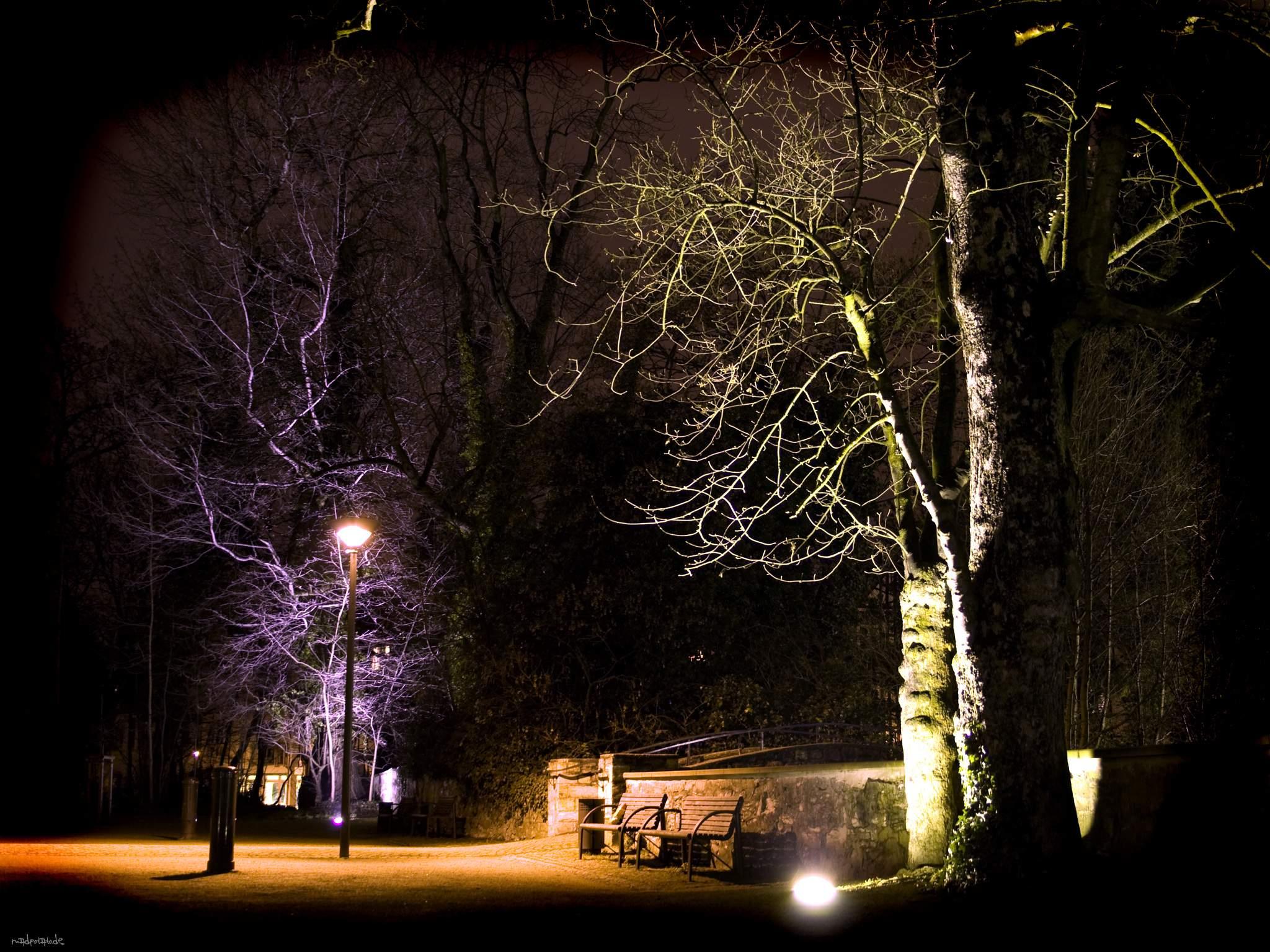 NightShot_6_2048.jpg