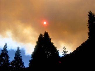 91938548_a866962dd0 Fire_ Yosemite Park_ California_O.jpg