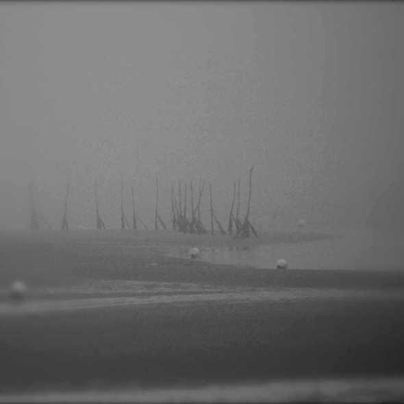 2404298683_62741b4413 ...and fogs_L.jpg