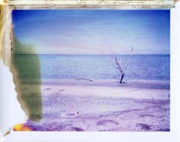 011 Salton Sea, CA.jpg