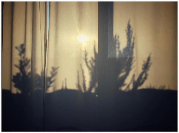 """Résultat de recherche d'images pour """"sun shadow curtain"""""""