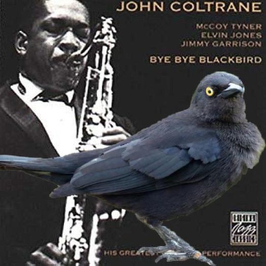Coltrane bye bye & blackbird